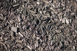 Black mulch free stock photo