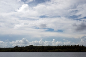 Miami landscape free stock photo