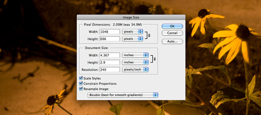 Sizing your image at 1048 pixels on the long edge in Adobe Photoshop