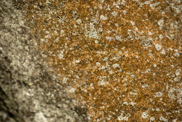 rock-texture-free-stock-photo