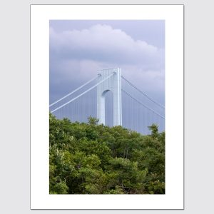 Verrazano Narrows & foliage limited edition print
