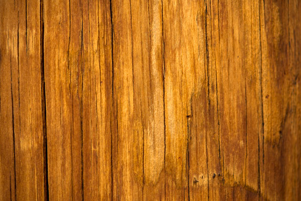Bright wooden texture free stock pic