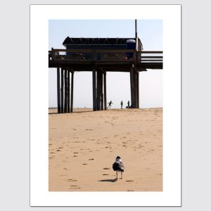 Limited edition wall art of bird watching people under pier on the beach
