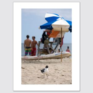 Beach day in Point Pleasant, NJ limited edition photo print