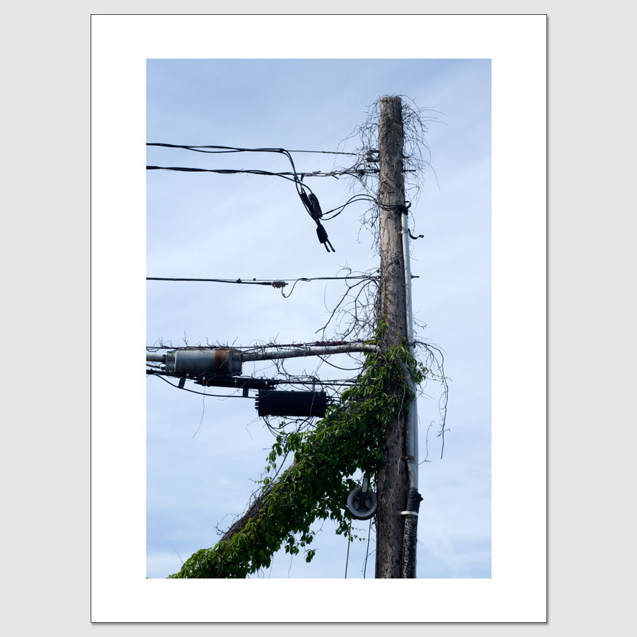 Limited edition wall art of utility pole in Nyack, New York.